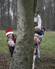 family-tree-kids-children.jpg