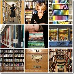 library-librarian-bookshelf-books