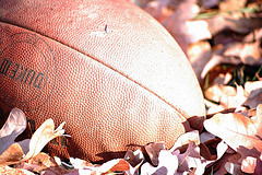 football-fall-pigskin