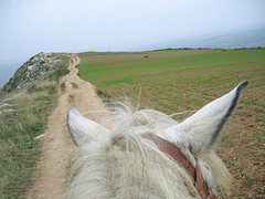 horse-ride-mountain-trail